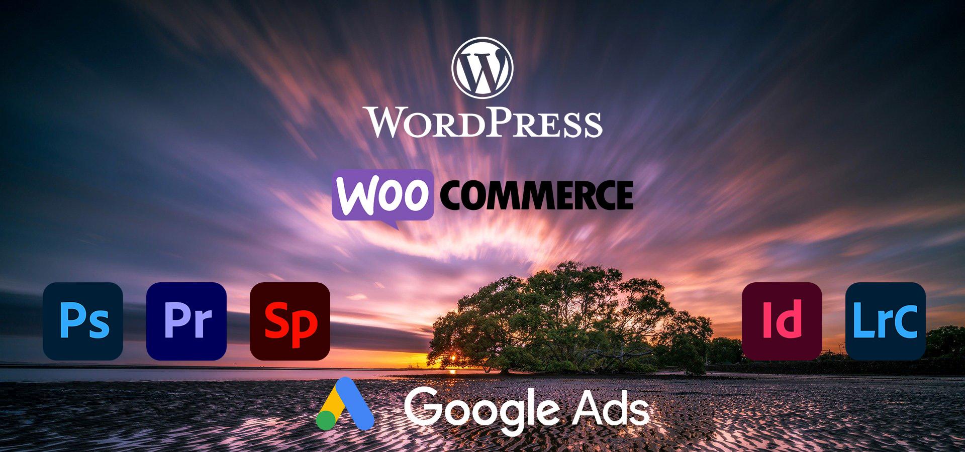 Webdesign, SEO, Google Ads, Content Management - wichtel media - Erstellung von Homepages und Online Shops